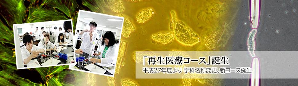 平成27年度 生体医工学科は生命医療工学科に名称変更し、再生医療コースが誕生します